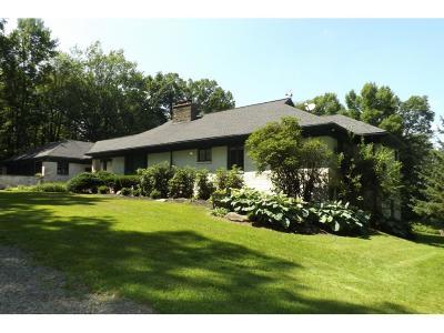 Binghamton Single Family Home For Sale: 1644 Hawleyton Road