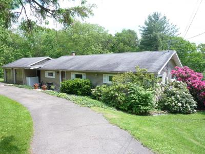 Endicott Single Family Home For Sale: 348 Valley View Drive
