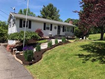 Owego Single Family Home For Sale: 577 Whittemore Hill Road