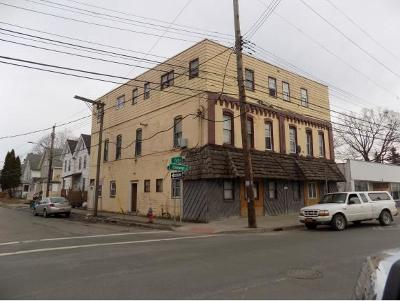 Binghamton Multi Family Home For Sale: 498 Chenango Street