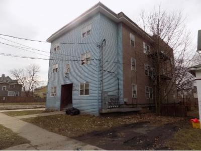Binghamton Multi Family Home For Sale: 19 Mygatt Street
