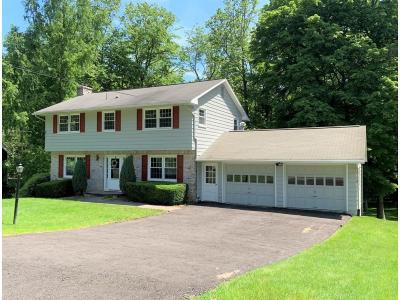 Endicott Single Family Home For Sale: 282 Ridgefield Road