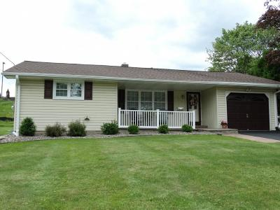 Endwell Single Family Home For Sale: 505 Patterson Court