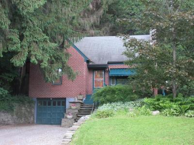 Chenango Single Family Home For Sale: 271 Smith Hill Road