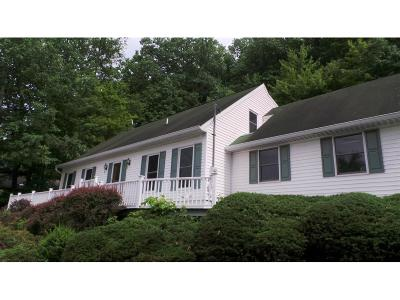 Binghamton Single Family Home For Sale: 29 Midwood Drive