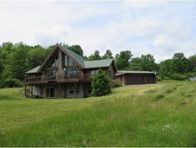Binghamton Single Family Home For Sale: 500 Old State Road