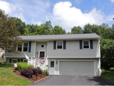 Endicott Single Family Home For Sale: 72 Coventry Rd