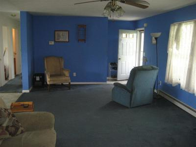 Tioga County Single Family Home For Sale: 1321 King Hill Rd