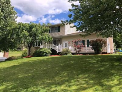 Apalachin Single Family Home For Sale: 31 Rebecca Drive