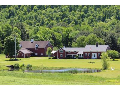 Single Family Home For Sale: 377 Ken Stead Road