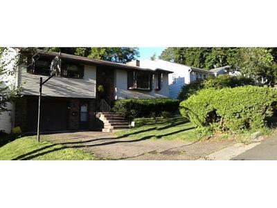 Binghamton Single Family Home For Sale: 9 Maria Manor