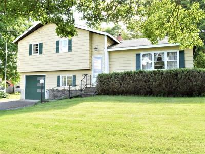 Newark Valley Single Family Home For Sale: 795 Whig