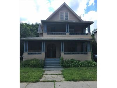 Binghamton Multi Family Home For Sale: 9 Arthur St