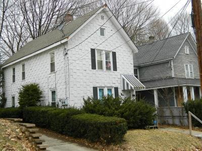 Binghamton Multi Family Home For Sale: 8.5 Vine Street