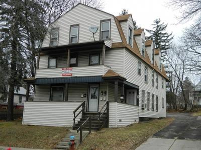 Binghamton Multi Family Home For Sale: 13 Mill Street