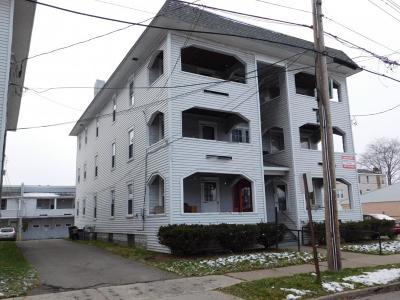 Endicott Multi Family Home For Sale: 308 Grant Avenue
