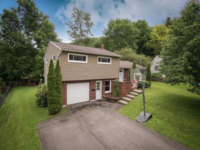 Broome County, Chenango County, Cortland County, Tioga County, Tompkins County Single Family Home For Sale: 321 Parkwood Rd