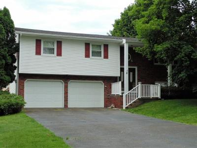 Apalachin Single Family Home For Sale: 8 Clover