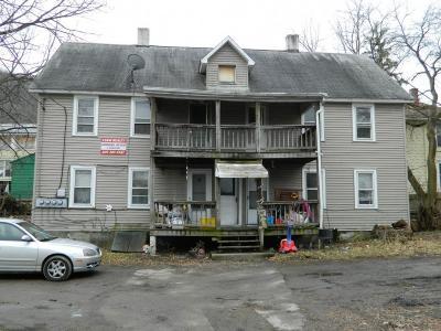 Binghamton Multi Family Home For Sale: 6 1/2 Evans Street