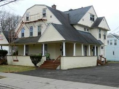 Johnson City Multi Family Home For Sale: 234 Ackley Avenue