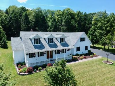Apalachin Single Family Home For Sale: 8 Springtree Boulevard