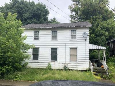 Tioga County Single Family Home For Sale: 94 Spencer Avenue