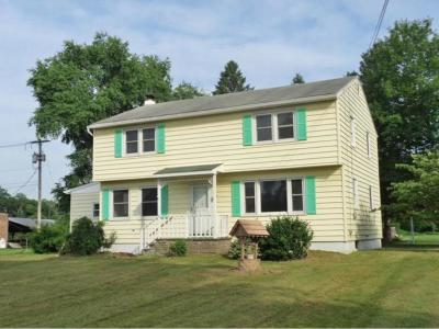 Owego Single Family Home For Sale: 9 Goodrich Road