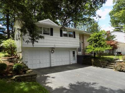 Vestal Single Family Home For Sale: 2508 Lynnhurst Drive