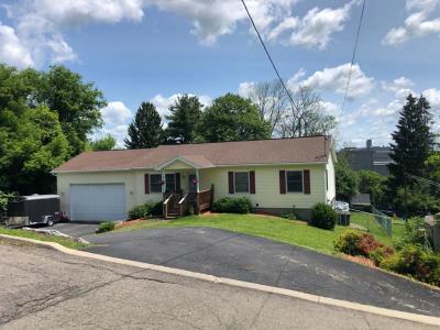Endicott NY Single Family Home For Sale: $169,900