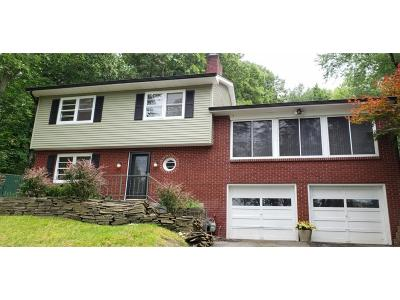Vestal Single Family Home For Sale: 3228 Knapp Rd