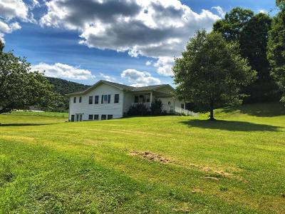 Windsor Single Family Home For Sale: 421 Nys Rte 79