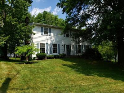 Apalachin Single Family Home For Sale: 16 Alpine Drive