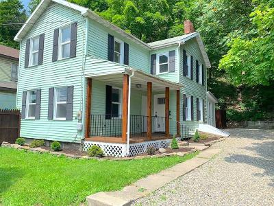 Tioga County Single Family Home For Sale: 204 North Ave