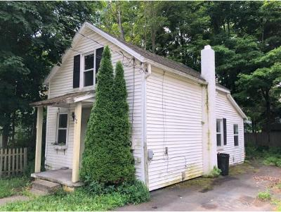Owego Single Family Home For Sale: 99 Paige Street
