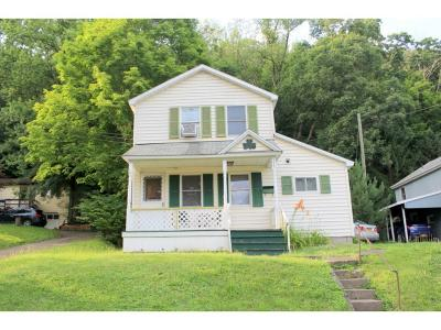 Tioga County Single Family Home For Sale: 225 Prospect St