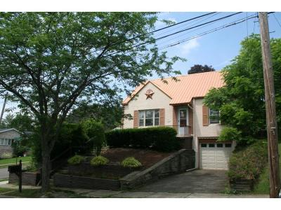Binghamton Single Family Home For Sale: 25 Woodland Avenue