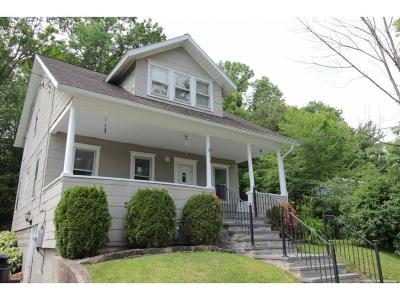 Endicott Single Family Home For Sale: 811 Day Hollow Rd