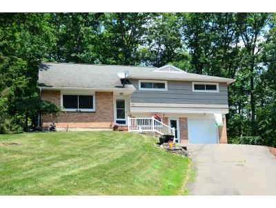 Owego Single Family Home For Sale: 18 Sunnyside Drive