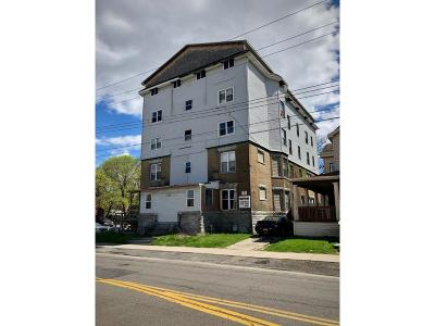 Broome County Multi Family Home For Sale: 108 Henry Street Portfolio