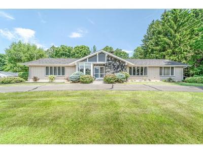 Tioga County Single Family Home For Sale: 929 McFadden Road