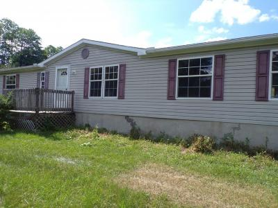 Tioga County Single Family Home For Sale: 204 Courtright Hill