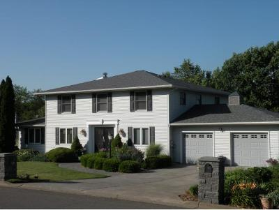 Binghamton Single Family Home For Sale: 30 Clearview Place