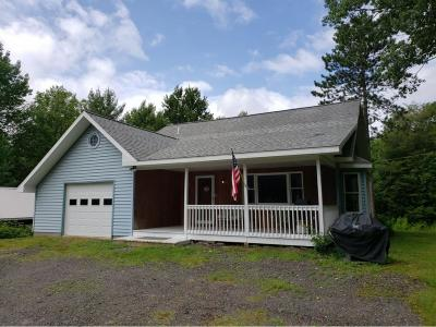 Broome County Single Family Home For Sale: 194 Martin Hill Road
