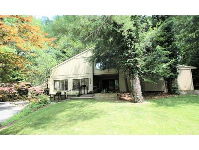 Binghamton Single Family Home For Sale: 2056 Colchester Dr