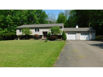 Apalachin Single Family Home For Sale: 259 McFadden Road