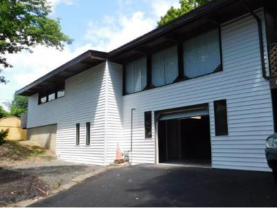 Broome County, Cayuga County, Chenango County, Cortland County, Delaware County, Tioga County, Tompkins County Single Family Home For Sale: 61 Old State Road