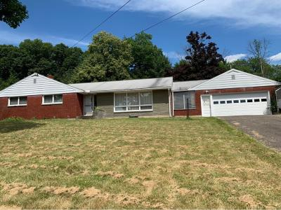 Endwell Single Family Home For Sale: 620 Sunset Dr.