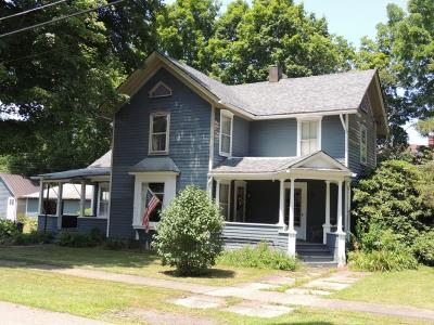 Tioga County Single Family Home For Sale: 64 Platt St