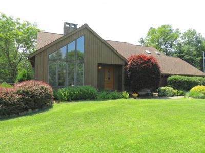Vestal Single Family Home For Sale: 581 Jones Road