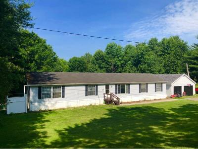 Lisle Single Family Home For Sale: 651 Mount Hunger Road